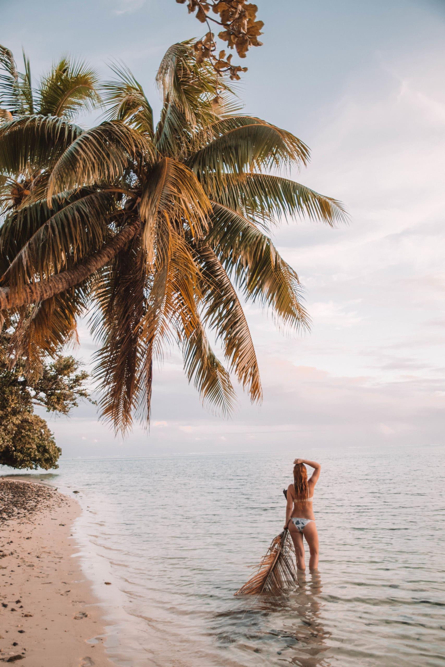 Details Of Perrine en blog trip en Polynésie Française