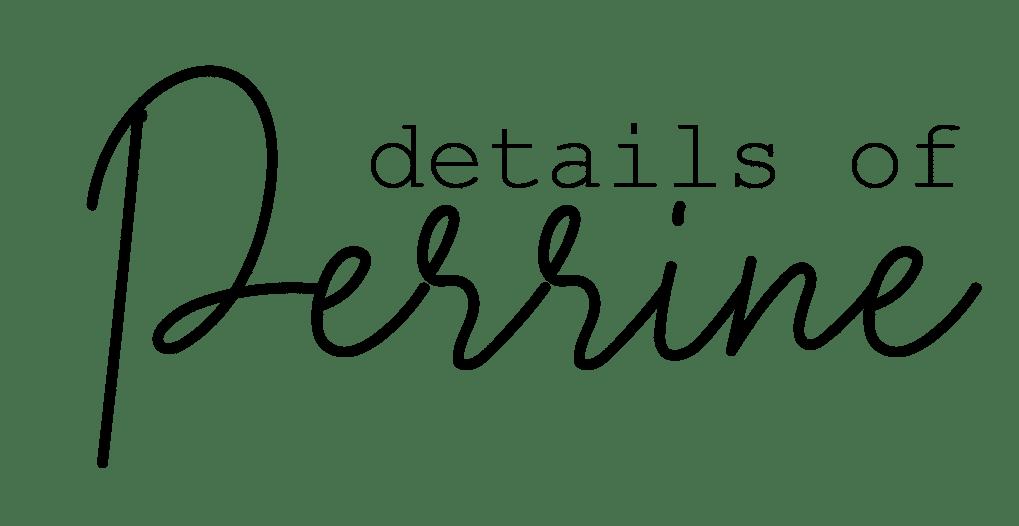 DETAILS OF PERRINE | BLOG ET VIDÉOS